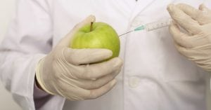 Are GMOs Harmful or Helpful | Hardy Wolf & Downing