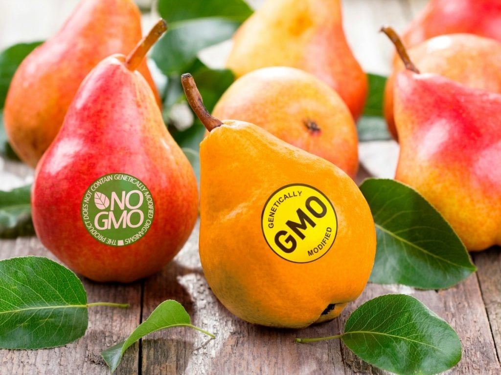GMO Fruits and Crops | Hardy Wolf & Downing