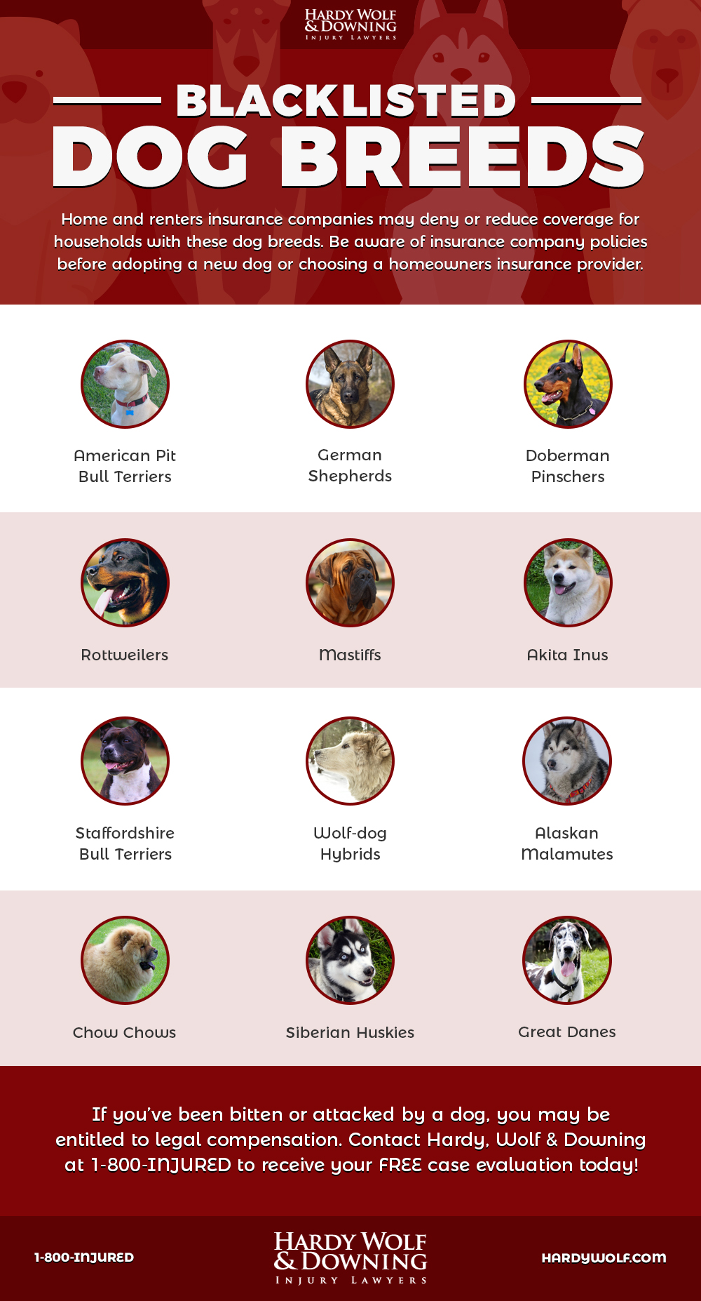 Common Breeds Banned By Insurance - Hardy Wolf & Downing